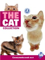 The Cat collection № 14 : Сомалийский кот